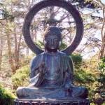 Buddha-SF