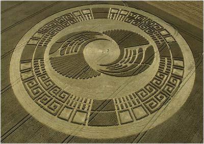 crop-circle-5