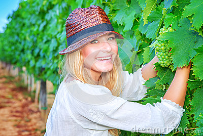 happy-girl-picking-grapes-grape-field-woman-gardener-sitting-ground-organic-healthy-food-enjoying-great-harvest-45183607