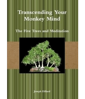 Transcending Your Monkey Mind
